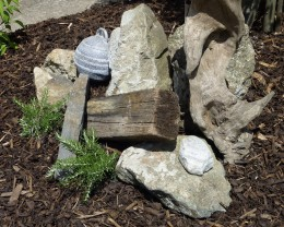 Bare bones - the beginnings of my memory garden - Spring 2010.