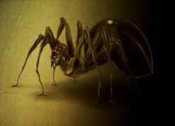 Anansi, Trickster Storyteller in West African Mythology