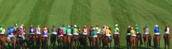 How to pick a Grand National winner