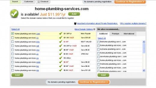 Choose your domain name and pick your extension.