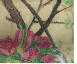 Erin's Art-multimedia and photography