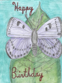How To Make A Butterfly Birthday Card With Colored Pencil Drawings