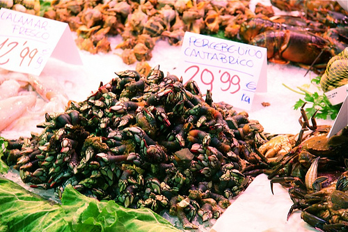 Percebes in Market