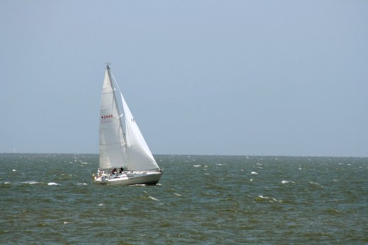 Sailing at Little Bay