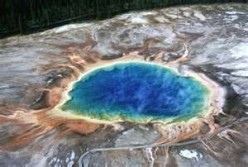 Is there an environment that extremophiles can not survive in?