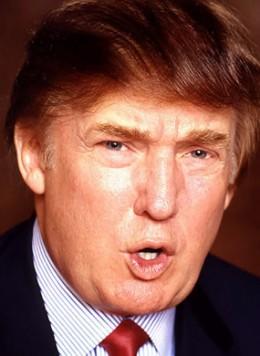 Donald Trump 2012