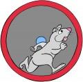 As the Hamster Wheel Turns, Part 2: Hamster Ball vs. Hamster Car