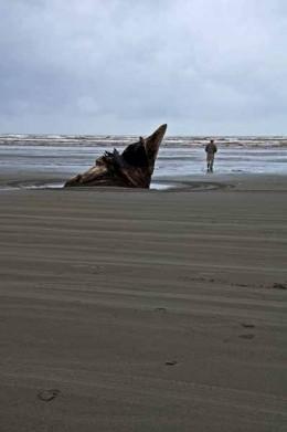 Beach scene at Moclips, Washington