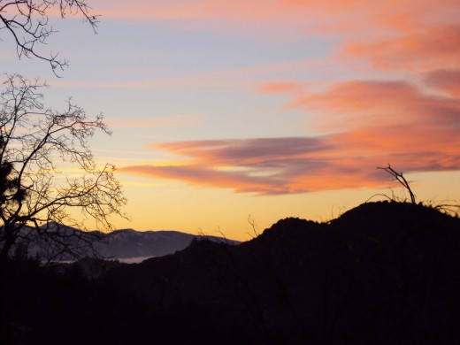 The outline of trees at sunset, with Mount Baldy in the distance.