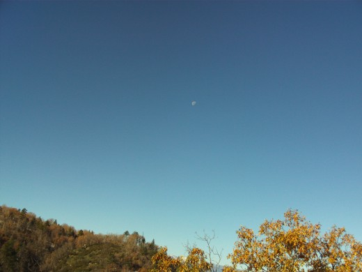 Moon visible in the sky on an early morning walk in the San Bernardino Mountains.
