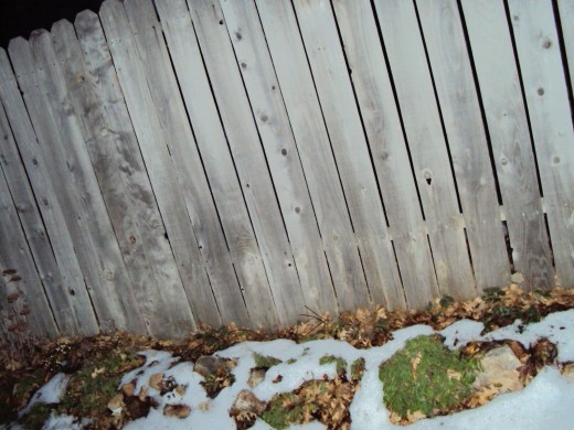 I even enjoyed photographing the patches of snow near the fence.