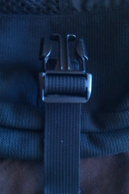 Replacement strap and buckle