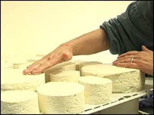hand salting the cheese