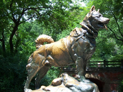 Statue of Balto in Central Park, New York City