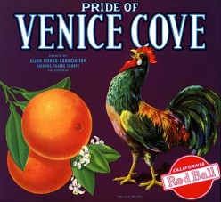free cross stitch pattern Venice Cove fruit crate label