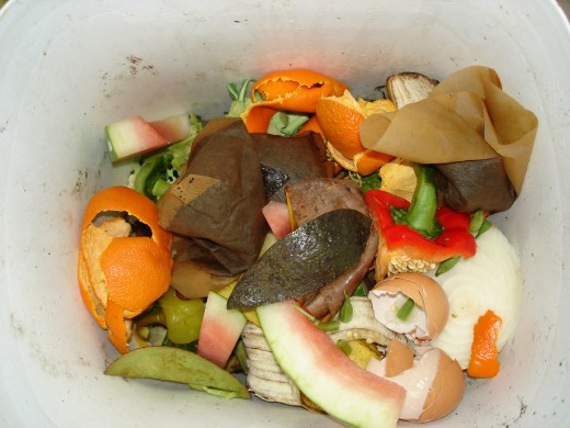 "For in-ground composting at its simplest, just toss a pail of kitchen scraps into a hole 12"" deep."