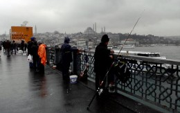 fishing from the bridge