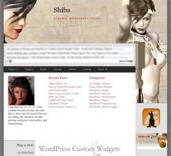 Add Google AdSense Ads to Your WordPress Blog