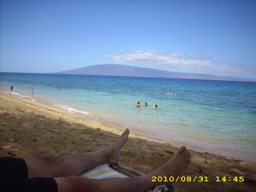 Here today; gone to Maui