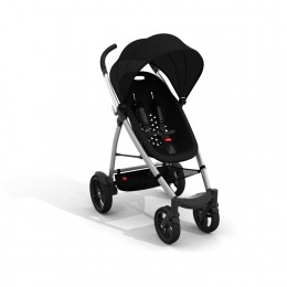 Phil and Teds Smart Buggy