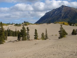 Carcross Desert, the World's Smallest Desert