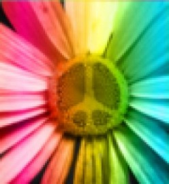 Flower Power Tea for Relaxation and Wellbeing