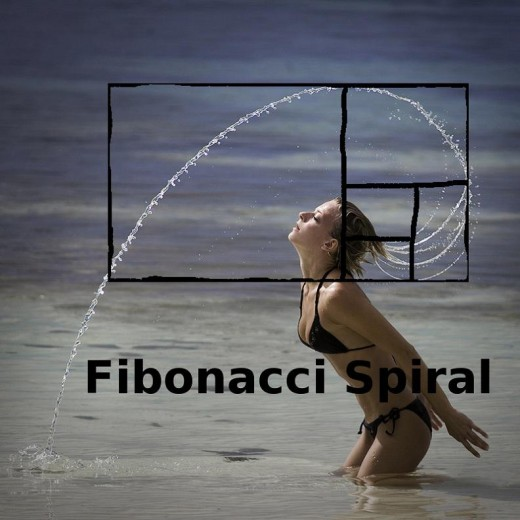 The Fibonacci sequence is named after Leonardo of Pisa, who was known as Fibonacci. A Fibonacci spiral is created by drawing arcs connecting the opposite corners of squares in the Fibonacci tiling; this one uses squares of sizes 1, 1, 2, 3, 5, 8, 13,
