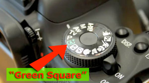 """""""Green Square"""" offers freedom and time to learn the Digital SLR settings"""