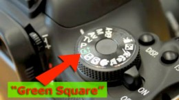 """Green Square"" offers freedom and time to learn the Digital SLR settings"