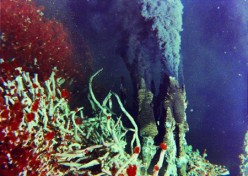 Hydrothermal Vent Basics