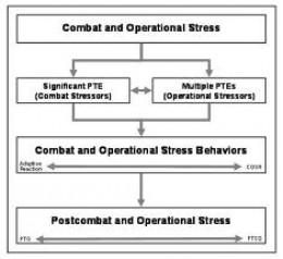 ptsd and mental illness more