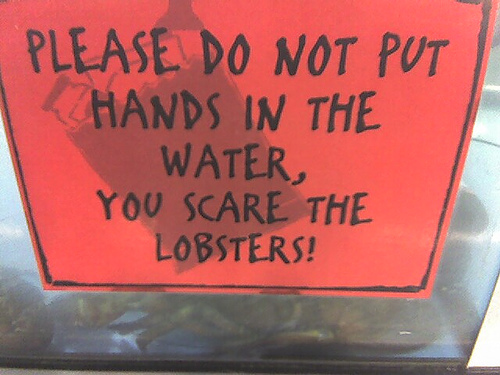 Hands will scare lobster