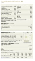 Wells Fargo Advantage Global Opportunities Fund Holdings