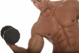 """Muscle development: """"No pain; no gain"""""""
