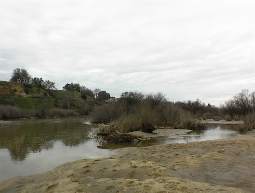 This is a portion of the Salinas River as it runs through Larry Moore Park in Paso Robles, California, in winter. Is it any wonder I'd rather be here than inside a gym on a treadmill?