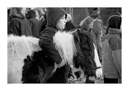 Tender: A child at the market cuddles his pony