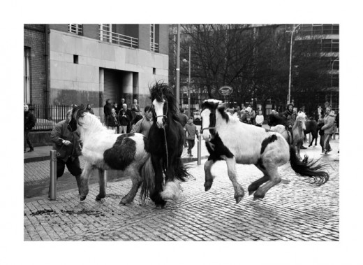 Spooked:  A group of ponies jump amidst the hustle and bustle at the fare