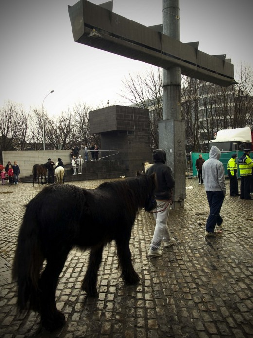 Pets: A young bay pony is lead past one of the giant lampposts in the Smithfield plaza