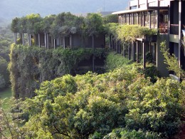 An ecolodge amidst foilage