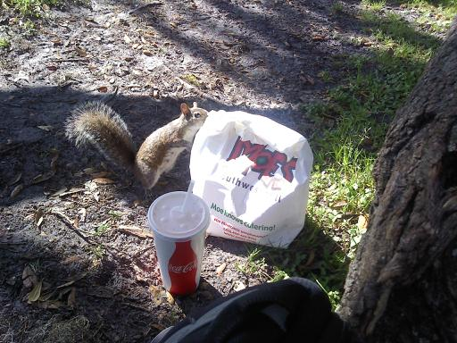 He also likes Moes.  :)