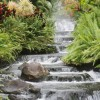 gretchen c profile image