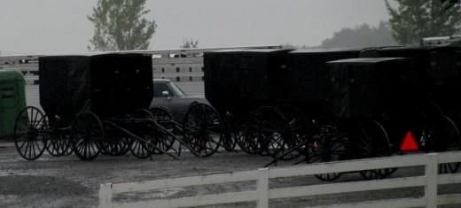 Amish Living
