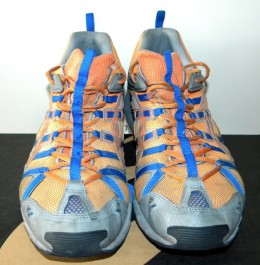I found these gently used Asics running shoes left on my recycle bin and sold them on eBay.
