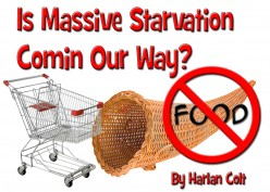 Starvation: Is Massive Starvation Coming Our Way?