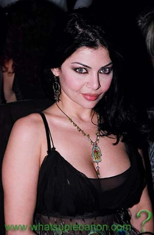 Final, sorry, Hot images of haifa wehbe with huge tits think