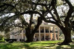 Louisianna Plantation