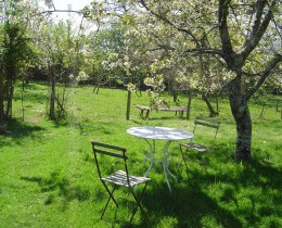 We have large gardens with lawns and fruit trees