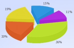 The following chart shows the program distribution for the top five issuing agencies
