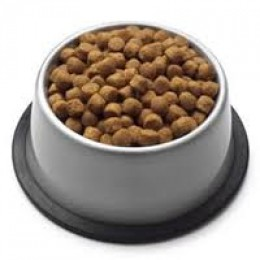 use dog biscuits this size for training as you only need to give 1 at a time