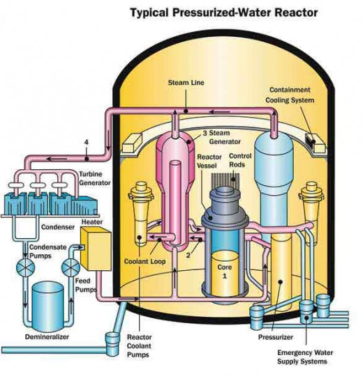 Schematic representation of pressurized water reactor.